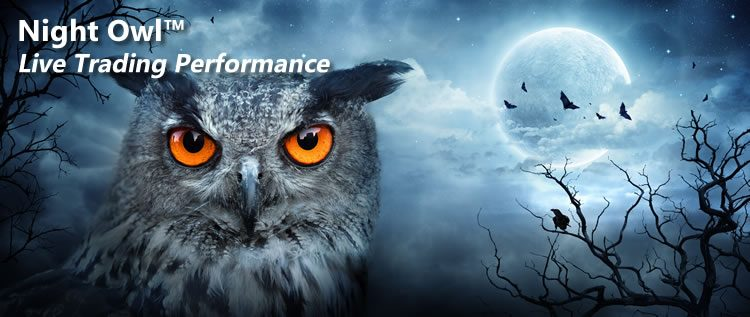 Night Owl Live Trading Performance Image